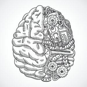 Design do cérebro humano